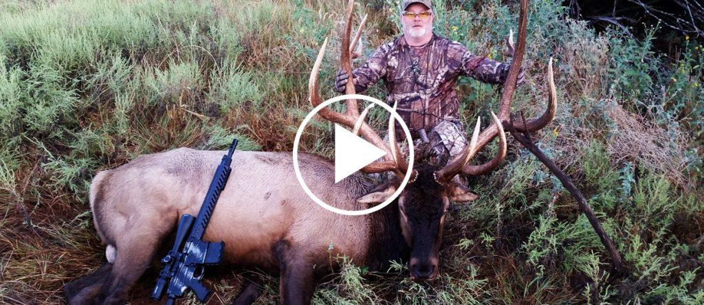 Elk Hunts  Guaranteed Hunts for Trophy Bulls!