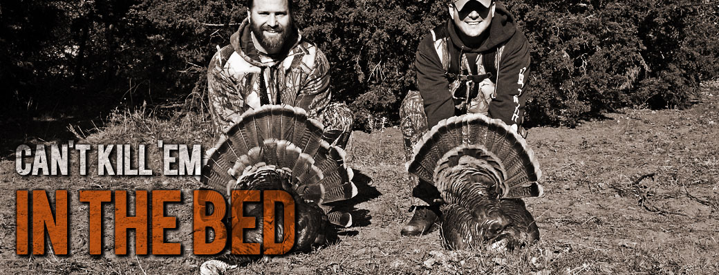 Wild Turkey Hunts