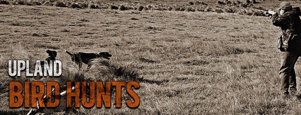upland bird hunts in Oklahoma